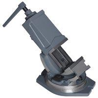 vidaXL Tornillo de banco basculante de 2 ejes 100 mm