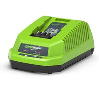 Greenworks Cargador con VDE 40 V 2 A