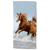 Good Morning Toalla de playa FREE marrón y azul 75x150 cm