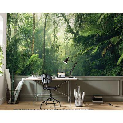 Komar Mural fotográfico Tropenwelten 500x250 cm