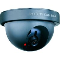 Video Camara Ficticia Domo - COSMO - CS44D