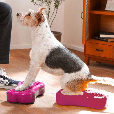 FitPAWS Plataforma equilibrio perros Mini K9FITbone 2 uds 29x16,5x6cm