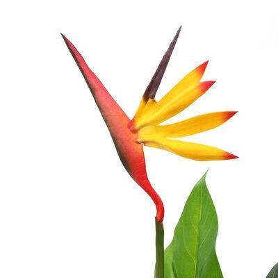 vidaXL Planta strelitzia reginae ave del paraíso artificial 66 cm