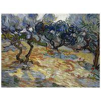 Impresión sobre lienzo - Vincent Van Gogh Olivos.