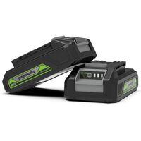 Greenworks Batería 24 V 2 Ah