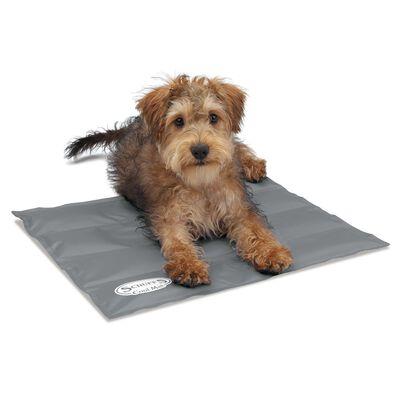 Scruffs & Tramps Alfombra refrescante para perros gris S 2716