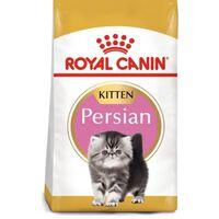 Royal Canin Kitten Persian  | 10 KG | Miscota Ecommerce
