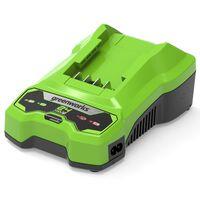 Greenworks Cargador de batería 24 V 2 A